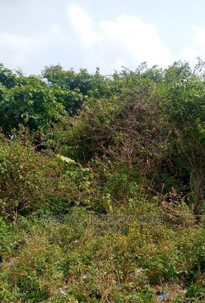 Diamond Estate, Farmland   Land & Plots For Sale for sale in Ogun State, Abeokuta North