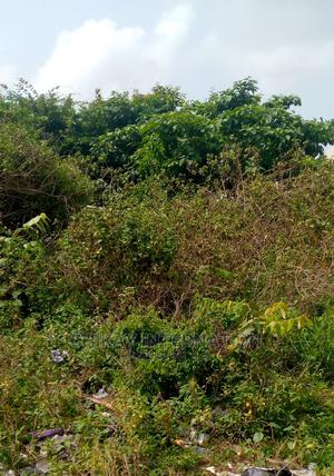 Diamond Estate Farmland   Land & Plots For Sale for sale in Epe, Epe