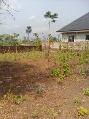 2 Plots of Land at Okwu-Ohia (Farmland) Chokota, Igbo Etche   Land & Plots For Sale for sale in Rivers State, Etche