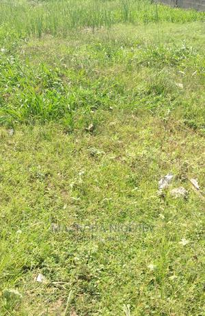 LEASE: 5100sqm Directly on Oshodi Apapa Express Rd   Land & Plots for Rent for sale in Lagos State, Apapa