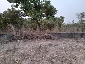 Hot Central Area Commercial Plot For Sale | Land & Plots For Sale for sale in Abuja (FCT) State, Central Business District