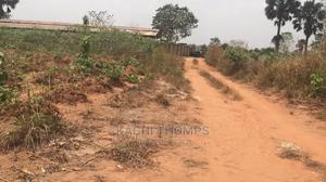 16 Plots Of Land Close To Chukwuemeka Odumegwu University   Land & Plots For Sale for sale in Anambra State, Anambra East