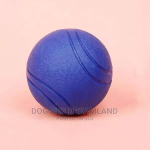 Dog Training Balls | Pet's Accessories for sale in Abuja (FCT) State, Kubwa