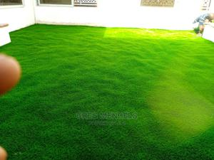 Carpet Grass For Sale   Garden for sale in Lagos State, Ikeja
