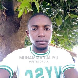 Mr Muhammad Nazir Aliyu | Technology CVs for sale in Nasarawa State, Keffi