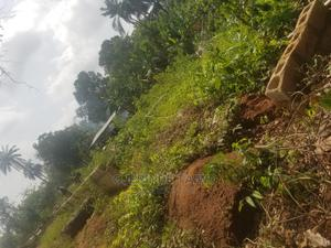 A Plot of Land for Sale   Land & Plots For Sale for sale in Osun State, Ife