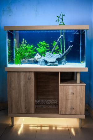 Aquarium With Fishes | Fish for sale in Lagos State, Ajah