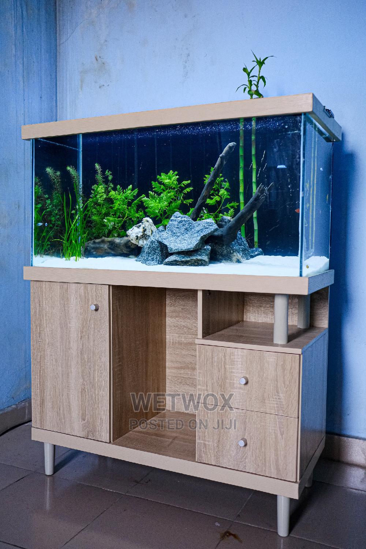 Aquarium With Fishes | Fish for sale in Ajah, Lagos State, Nigeria