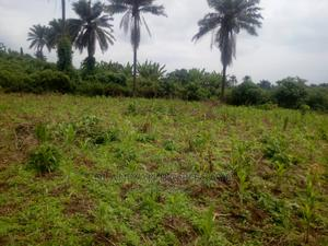 Land for Sale   Land & Plots For Sale for sale in Oyo State, Akinyele