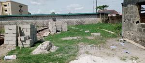 For Sale Corner Piece Plot of Land, United Estate,Sangotedo   Land & Plots For Sale for sale in Ajah, Sangotedo