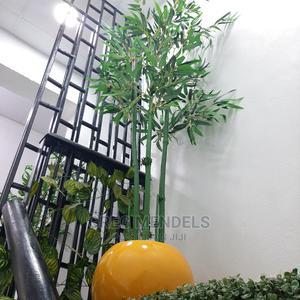 Lovely Bamboo Plant Suitable for Garden   Garden for sale in Lagos State, Ikeja