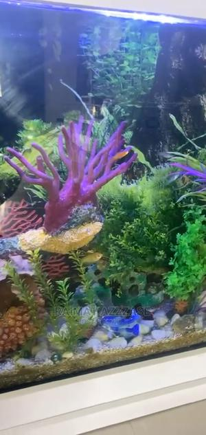 6ft Length Wall Aquarium   Fish for sale in Lagos State, Surulere