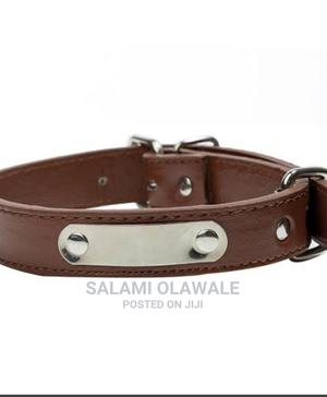 Dog Collar (Any Seize and Colour) | Pet's Accessories for sale in Lagos State, Ikorodu