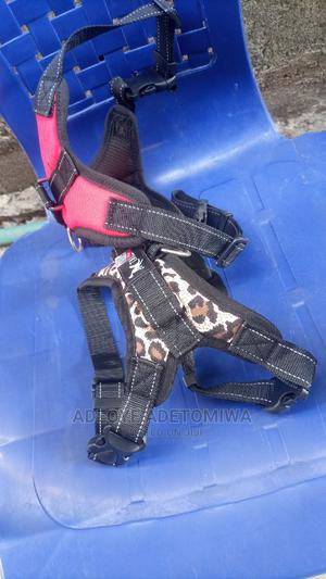 Dog Harness Available for Sale at Tenneas Pet Store | Pet's Accessories for sale in Oyo State, Ibadan