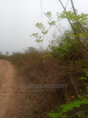 40 Acrea of Land Within Ibadan. | Land & Plots For Sale for sale in Oyo State, Ido
