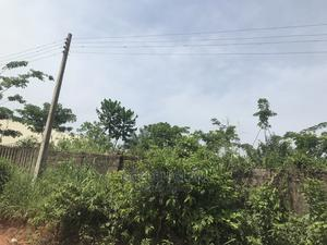 Land for Sale at Airport Road. Ogba Community   Land & Plots For Sale for sale in Edo State, Benin City