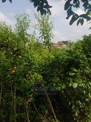 Plots of Land for Sale at Akobo Area   Land & Plots For Sale for sale in Oyo State, Lagelu