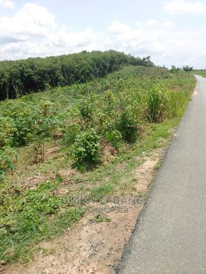 600 Plots Of Land In Calabar For Sale   Land & Plots For Sale for sale in Cross River State, Calabar