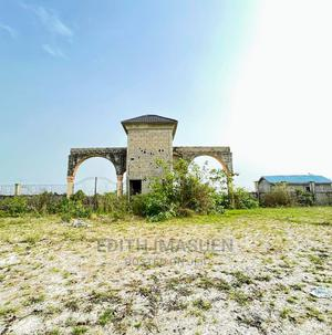 100% Dry Land With Instant Allocation in Festac | Land & Plots For Sale for sale in Amuwo-Odofin, Festac