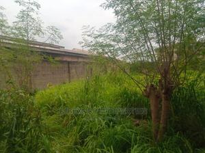Half Plot for Sale Off Ilo Awela Toll Gate   Land & Plots For Sale for sale in Ogun State, Ado-Odo/Ota
