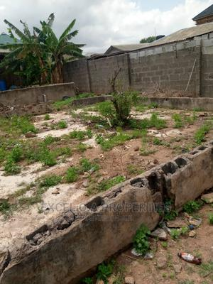 Half Plot of Land for Sale | Land & Plots For Sale for sale in Lagos State, Abule Egba