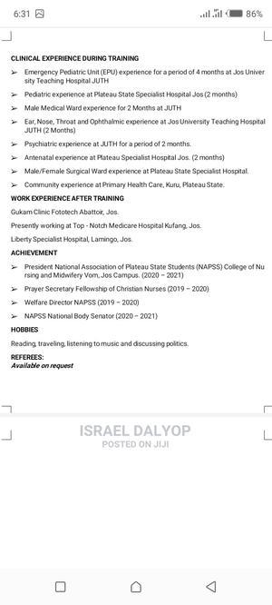 Healthcare Nursing CV   Healthcare & Nursing CVs for sale in Borno State, Maiduguri