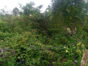 20 Acres of Affordable Farmlanded Property for Sale   Land & Plots For Sale for sale in Ogun State, Ilaro