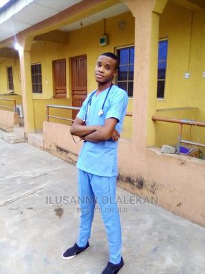 Registered Nurse | Healthcare & Nursing CVs for sale in Ogun State, Ijebu