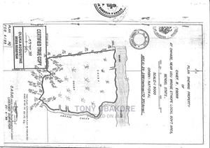 Cheap Land With C Of O For Sale | Land & Plots For Sale for sale in Delta State, Warri