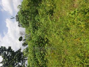 One Plot of Land for Sale   Land & Plots For Sale for sale in Rivers State, Port-Harcourt