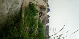 Plot Of Land Available At Abuleado Festac Extension | Land & Plots For Sale for sale in Amuwo-Odofin, Abule Ado