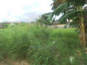 Land for Sale With Survey Plan and Receipt | Land & Plots For Sale for sale in Alimosho, Akesan