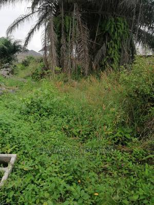 Half Plot of Land   Land & Plots For Sale for sale in Ibeju, Awoyaya