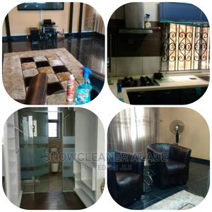 Professional Cleaning, Funmigation , Janitorial Services   Cleaning Services for sale in Lagos State, Ikeja