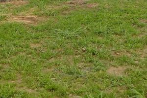 Land for Sale   Land & Plots For Sale for sale in Lagos State, Abule Egba