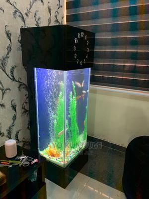 Clock Aquarium | Fish for sale in Lagos State, Lekki