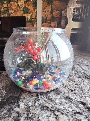 Stunning Fish Bowl   Fish for sale in Lagos State, Lekki
