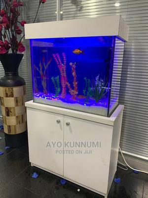 Portable Standing Aquarium   Fish for sale in Lagos State, Lekki
