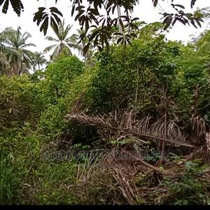 20 Acres of Land for Residential Estate   Land & Plots For Sale for sale in Oyo State, Lagelu