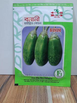 Lal Teer Banani F1 Hybrid Egg Plant Seeds   Feeds, Supplements & Seeds for sale in Lagos State, Ikeja