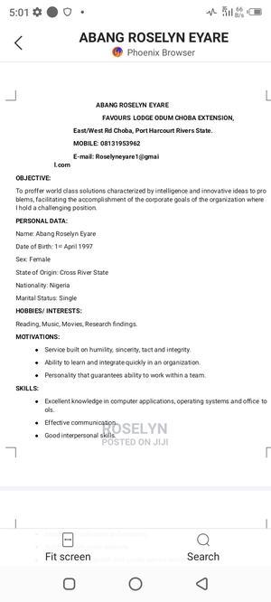 Logistics Agents Job   Logistics & Transportation CVs for sale in Lagos State, Isolo