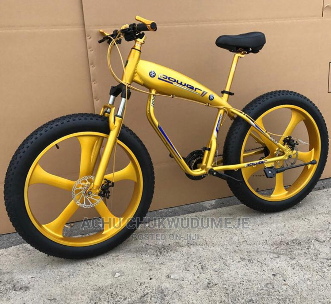 Archive: Fat Tyre Bicycle