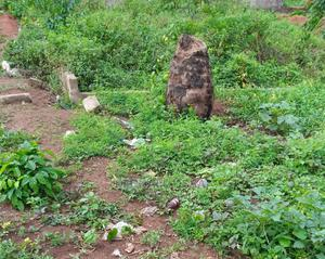 A Plot of Land | Land & Plots For Sale for sale in Edo State, Benin City