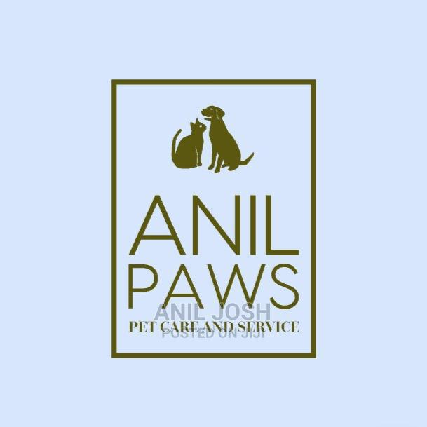 Pet Care Services and Dog Training