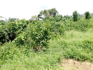1 Acres of Land at Aba Sule Idi Omoo, Arulogun Ojoo Ibadan   Land & Plots For Sale for sale in Oyo State, Ibadan