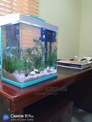 Full Kit Aquarium | Fish for sale in Lagos State, Surulere