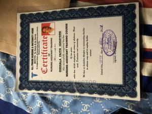 Healthcare Nursing CV   Healthcare & Nursing CVs for sale in Edo State, Benin City