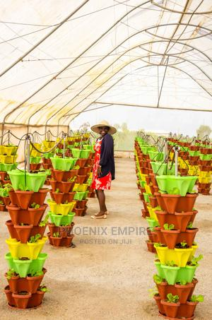 Hydroponics Set   Farm Machinery & Equipment for sale in Rivers State, Port-Harcourt