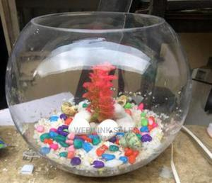 Full Kit Fish Bowl Available For You   Fish for sale in Lagos State, Surulere