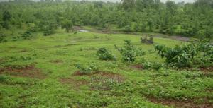 50 Plots of Land for Sale   Land & Plots For Sale for sale in Rivers State, Eleme